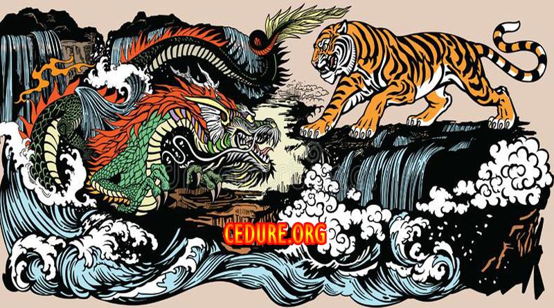 DRAGON TIGER TERBAIK INDONESIA